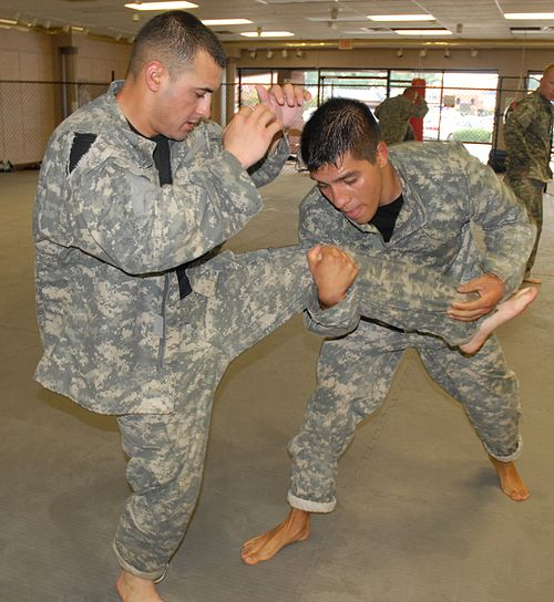 Flickr - The U.S. Army - Combatives training.jpg