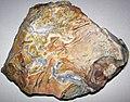 Flint (Vanport Flint, Middle Pennsylvanian; Nethers Flint Quarries, Flint Ridge, Ohio, USA) 167.jpg
