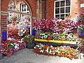 Floral display, Bridlington Station - geograph.org.uk - 1428527.jpg