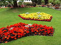 Flowerbeds, Botanic Gardens, Churchtown 1.JPG
