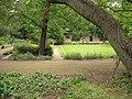 Focke-Garten-3.jpg