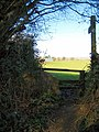 Footpath to Haselbury Plucknett - geograph.org.uk - 1173253.jpg