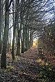 Footpath to Kirtling - geograph.org.uk - 1058717.jpg