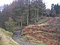 Ford , Woodclose Gill , Hope Plantation - geograph.org.uk - 145584.jpg