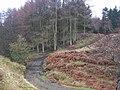 Ford , Woodclose Gill , Hope Plantation - geograph.org.uk - 145584.jpg