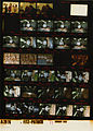 Ford A2976 NLGRF photo contact sheet (1975-01-27)(Gerald Ford Library).jpg