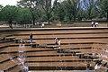Fort Worth Water Garden.jpg