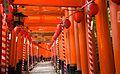 Fushimi Inaritaisya 伏見稻荷大社 (KYOTO-JAPAN) (4951388864).jpg