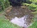 GOC The Pelhams 037 Pond near Brent Pelham (27550798904).jpg