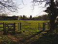 Gate on the footpath from Longparish to Middleton - geograph.org.uk - 147476.jpg