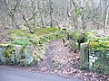 Gateway to Hathershelf Scout Wood, Mytholmroyd - geograph.org.uk - 1200078.jpg