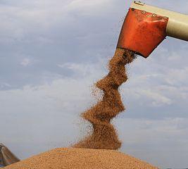 GetreideErnte... origWI.jpg