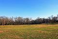 Gfp-missouri-babbler-state-park-meadow.jpg