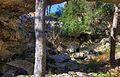 Gfp-texas-natural-bridge-caverns-sinkhole.jpg