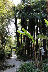 Botanischer Garten Gardone Wikipedia