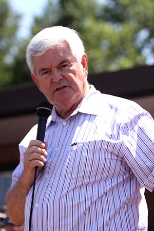 Newt Gingrich presidential campaign, 2012 - Newt Gingrich speaking to voters in Des Moines, Iowa