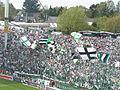 Gladbach Fans.JPG