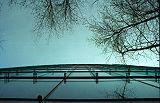 Glass-metal-and-trees.jpg