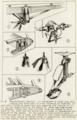 Gloster Grebe,Grouse detail drawings 1 NACA Aircraft Circular No.7.png