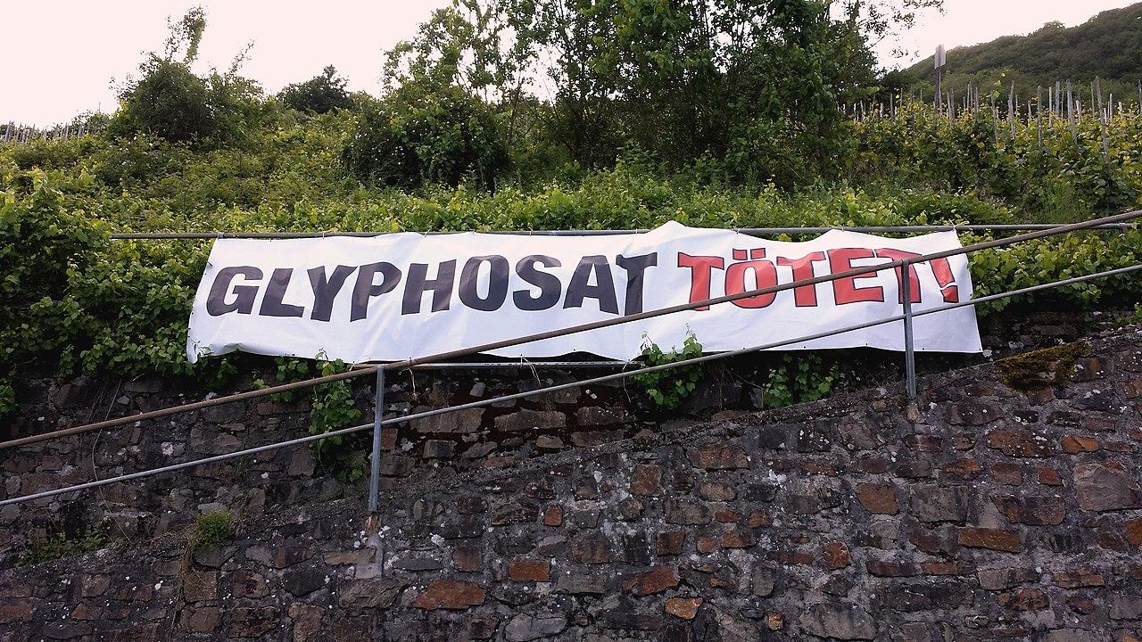 Glyphosat Tötet!.jpg