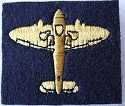 Gold Spitfire Badge