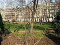 Gordon Square, Bloomsbury - geograph.org.uk - 673054.jpg
