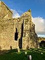 Graveyard, Hore Abbey, Caiseal, Éire - 44767972200.jpg