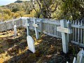 Graveyard of the Hardwicke Settlement site.jpg