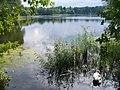 Grunewald - Hundekehlesee (Hundekehle Lake) - geo.hlipp.de - 42182.jpg