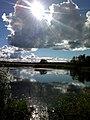 Guryevskiy r-n, Kaliningradskaya oblast', Russia - panoramio (45).jpg