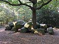 Hünensteine I bei Damme 2.jpg