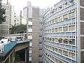 HK 上環 Sheung Wan open day 樂善堂梁銶琚書院 Lok Sin Tong Leung Kau Kui College view 醫院道 Hospital Road Dec 2016 Lnv2 01.jpg