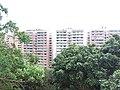 HK 香港南區 Southern District PFL Pokfulam 薄扶林道 Pok Fu Lam Road buildings September 2019 SSG 01.jpg