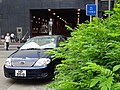 HK CWB Tin Hau morning Sept-2015 Hing Fat Street Victoria Park carpark n green plants.JPG