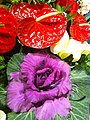 HK Central flowers City Hall art expo green purple n red Nov-2012.JPG