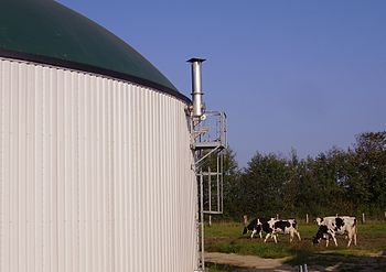 English: Haase maize anaerobic digester Author...