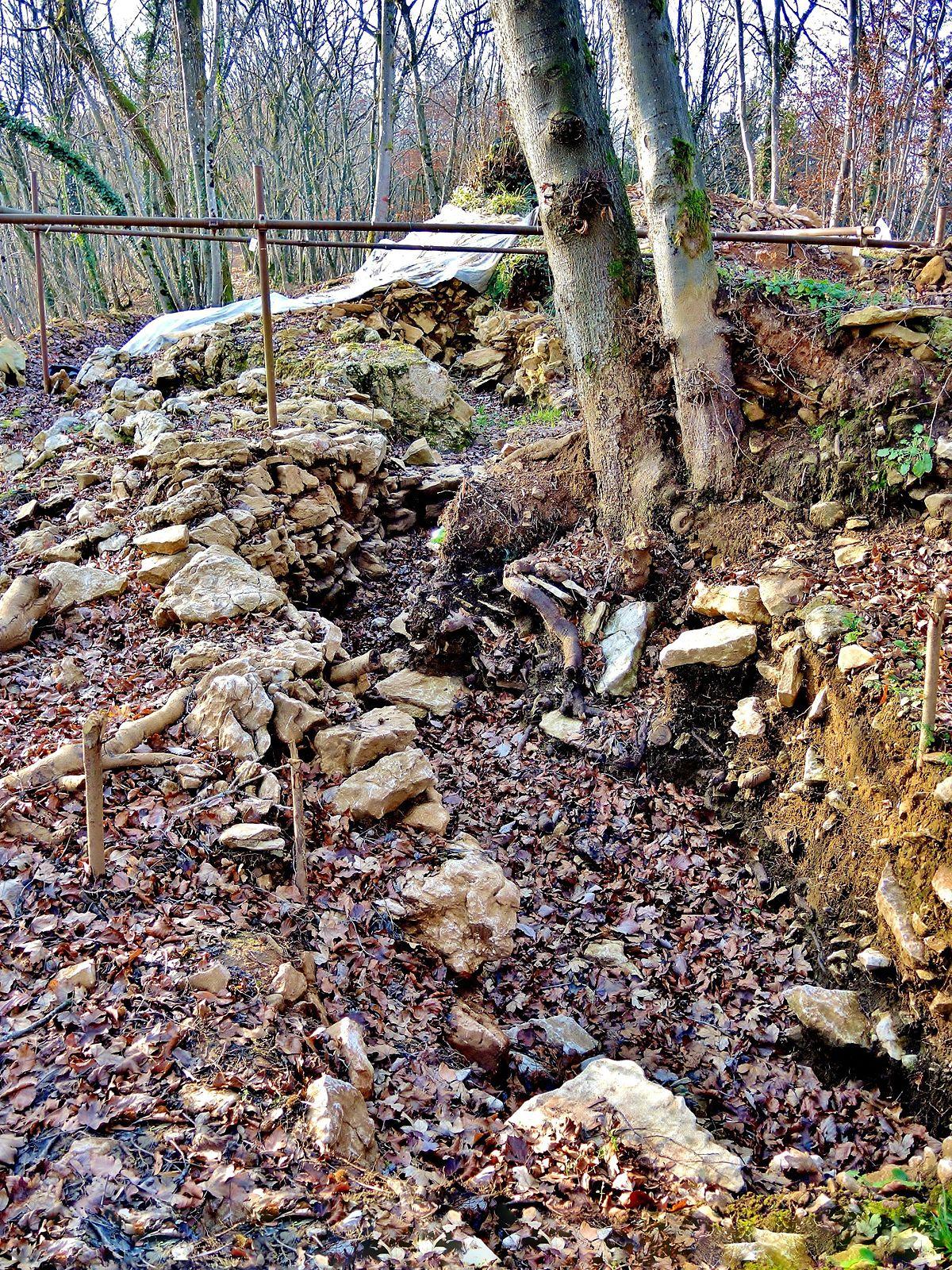 Habitat fortifi du bois de la miotte wikip dia for Habitat de la vienne chatellerault
