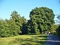 Hakenfelde - Am Haveluferweg (Havel Riverside Path) - geo.hlipp.de - 41687.jpg