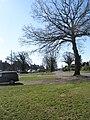 Hamstead Meadow - geograph.org.uk - 1227730.jpg