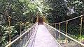 Hanging Bridge - vazhani Dam.jpg