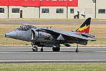 Harrier (5132977730).jpg