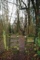 Harrocks Wood - geograph.org.uk - 1763487.jpg
