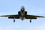 Hawk - RAF Valley Anglesey August 2009 (3856481249).jpg