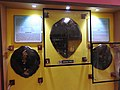 Hawksbill turtle-2-samudrika museum-andaman-India.jpg