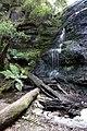 Henderson Falls Lorne Victoria Australia - panoramio.jpg