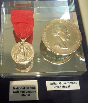 SS Monte Nevoso - Henry Blogg's Canine Defence League Medal and the Italian Silver Medal, (Cromer Lifeboat Museum)