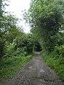 Hickmerslands Lane - geograph.org.uk - 872506.jpg