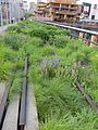 High Line, New York City (2014) - 14.JPG