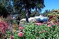 Hillwood Gardens in September (21660323535).jpg