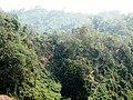 Himchori Hills Common Nature.jpg